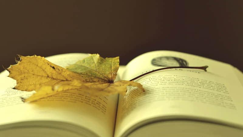 关于阅读的英文励志格言