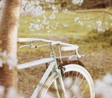 最浪漫的早安情话 最简单最动听的情话大全