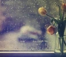 愿身边的亲人一切安好的说说 愿你安好的唯美句子